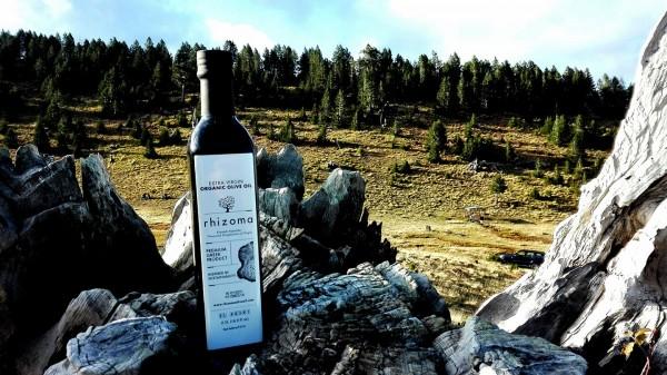 """Rhizoma"" Bio Premium Olivenöl PDO limitiert, 500 ml"